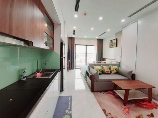 Studio apartments for rent in D'.El Dorado I Premium, 659A Lac Long Quan, Tay Ho, Hanoi (2)