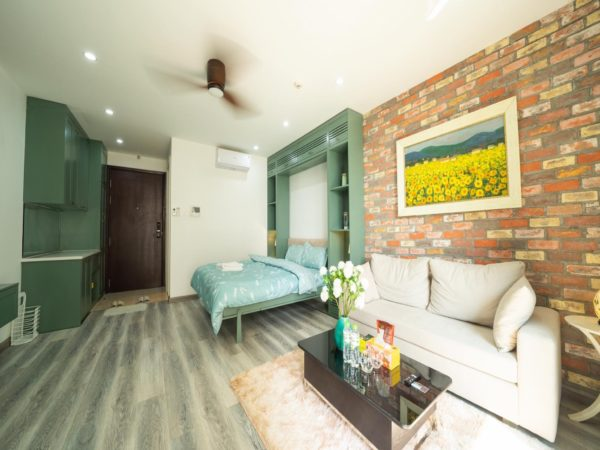 Studio apartments for rent in Vinhomes D'.Capitale Tran Duy Hung, Cau Giay, Hanoi (10)
