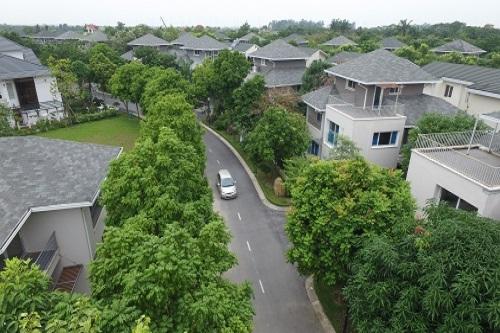 Vuon Mai Villa Subdivision at Ecopark Urban
