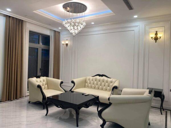 Elegant neoclassical villa for rent in Vinhomes The Harmony (1)